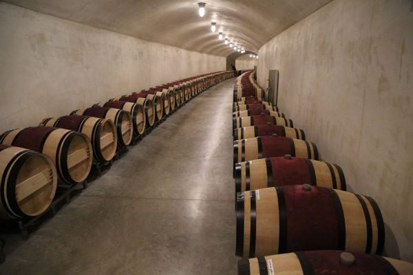 Checkerboard-Vineyards-3