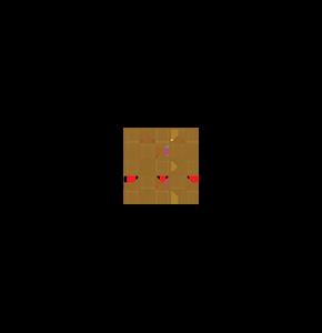 Checkerboard Vineyar