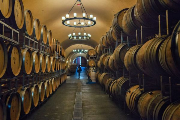 Winery-A--14