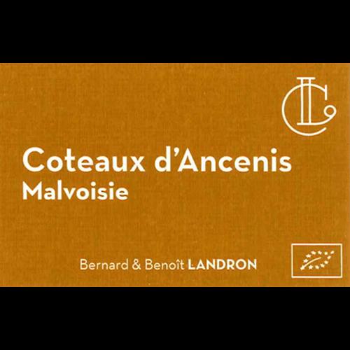 Révélation Malvoisie Coteaux d'Ancenis